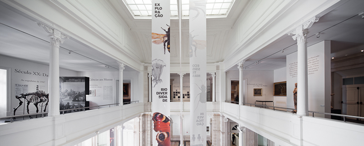 http://www.sitespecific.pt/files/gimgs/16_0901.png